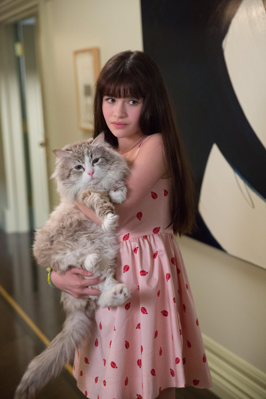 Смотреть фильм кот 9 жизней